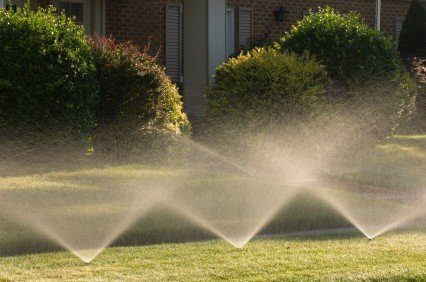 July 1 Marks Re-Launch of LADWP Water Rebate Program for Homes and Businesses