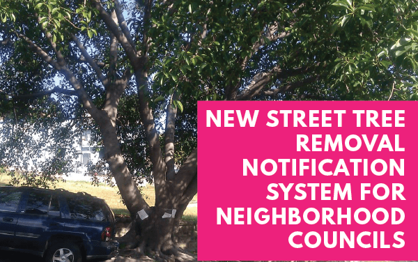 New Tree Removal Notification for Neighborhood Councils