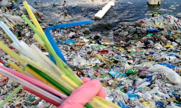 City of L.A. phasing out single-use plastic straws by 2021