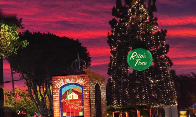 Granada Hills Tree Lighting Video