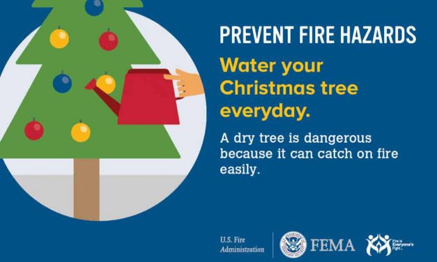 Prevent Fire Hazards: Water Your Christmas Tree Every Day