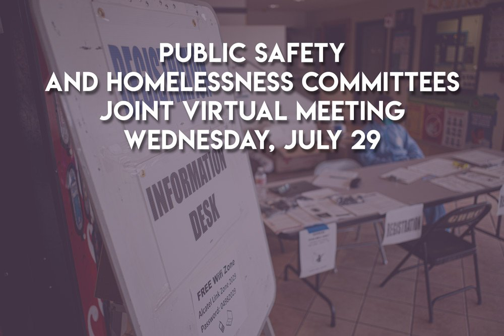 GHSNC Joint Public Safety and Homelessness Committees Meeting – Wednesday, July 29, 2020